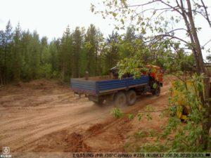 фото с фотоловушки Kubik - Севералмаз авто