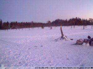 зимнее фото c KUBIK