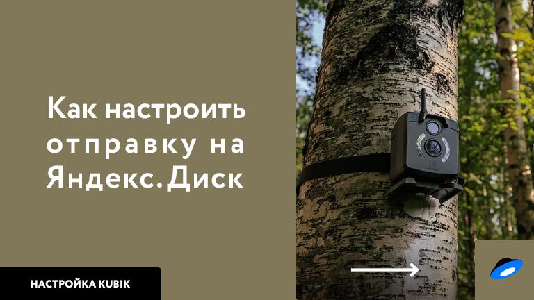 Инструкция по настройке отправки на Яндекс.Диск
