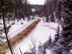 фото с фотоловушки Kubik - контроль дороги